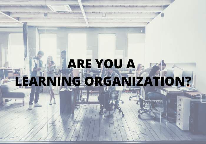 Are you a learning organization_